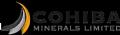 Cohiba Minerals Ltd